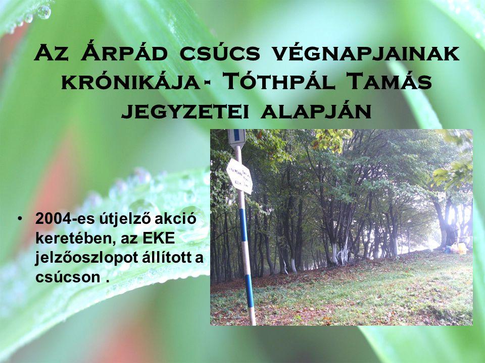 Az Árpád csúcs végnapjainak krónikája - Tóthpál Tamás jegyzetei alapján •2004-es útjelző akció keretében, az EKE jelzőoszlopot állított a csúcson.