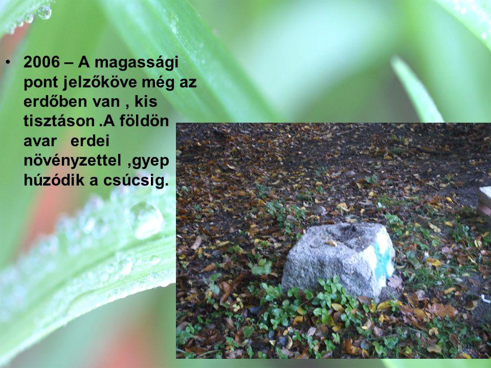 •2006 – A magassági pont jelzőköve még az erdőben van, kis tisztáson.A földön avar erdei növényzettel,gyep húzódik a csúcsig.