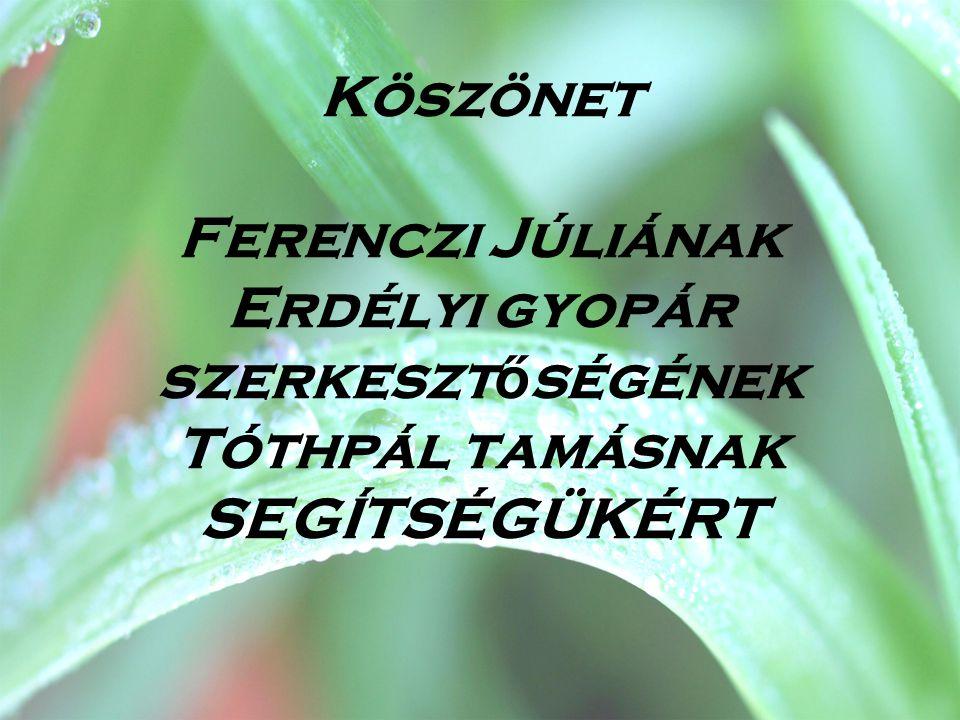 Köszönet Ferenczi Júliának Erdélyi gyopár szerkeszt ő ségének Tóthpál tamásnak SEGÍTSÉGÜKÉRT
