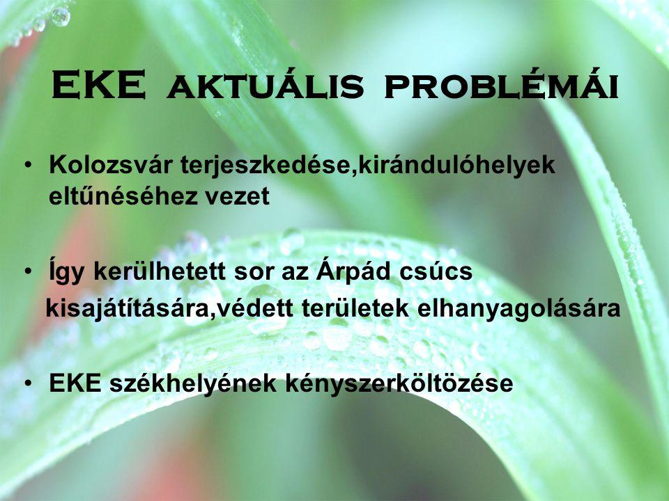 EKE aktuális problémái •Kolozsvár terjeszkedése,kirándulóhelyek eltűnéséhez vezet •Így kerülhetett sor az Árpád csúcs kisajátítására,védett területek