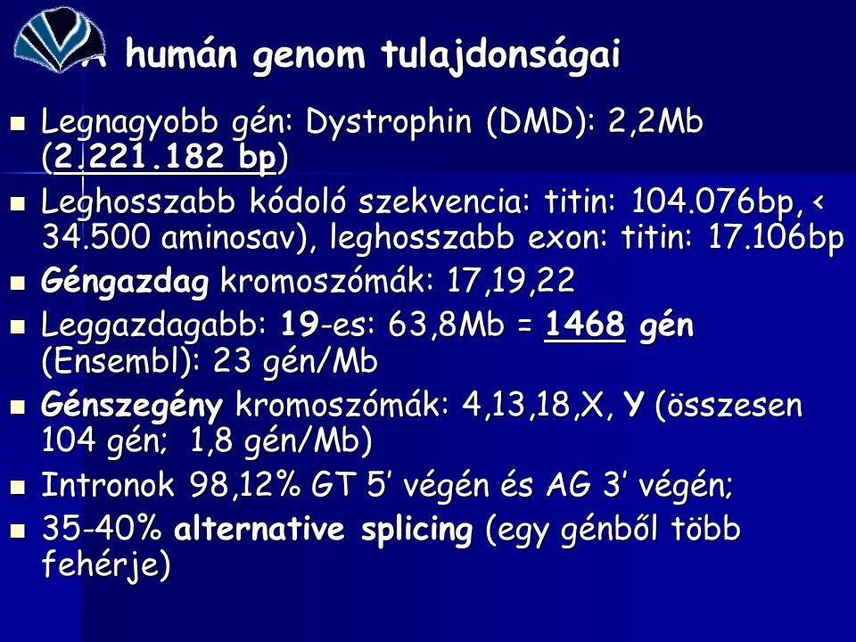 Milyen információkat nyújt a humán genom szekevenciája.