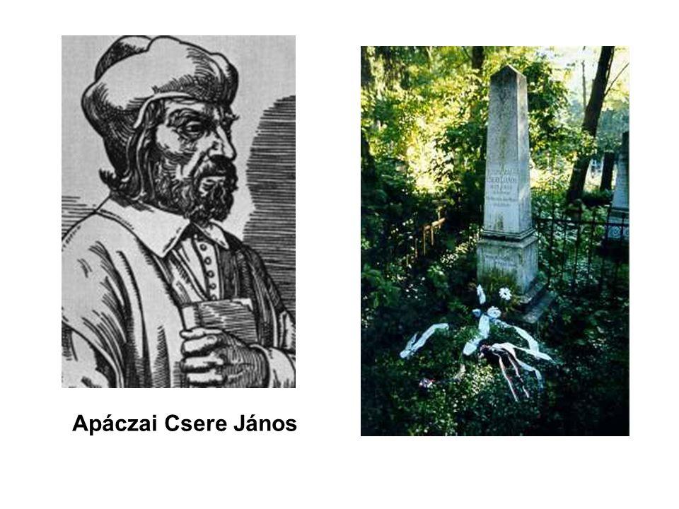 Apáczai Csere János