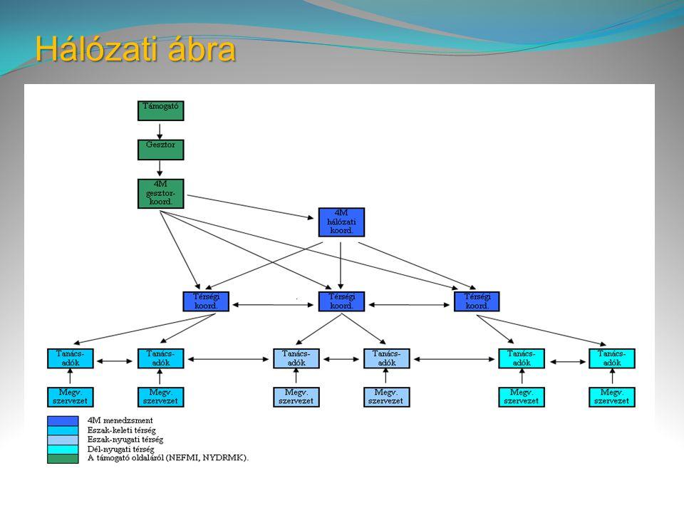 Hálózati ábra