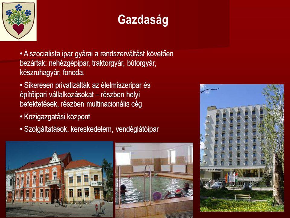 Gazdaság • A szocialista ipar gyárai a rendszerváltást követően bezártak: nehézgépipar, traktorgyár, bútorgyár, készruhagyár, fonoda.