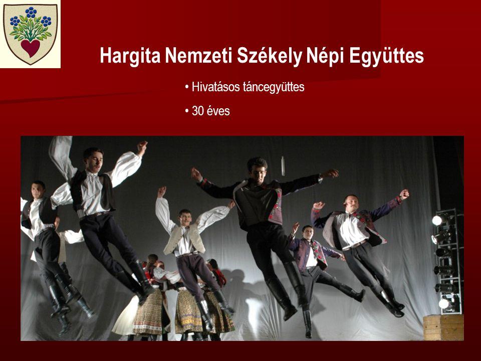 Hargita Nemzeti Székely Népi Együttes • Hivatásos táncegyüttes • 30 éves