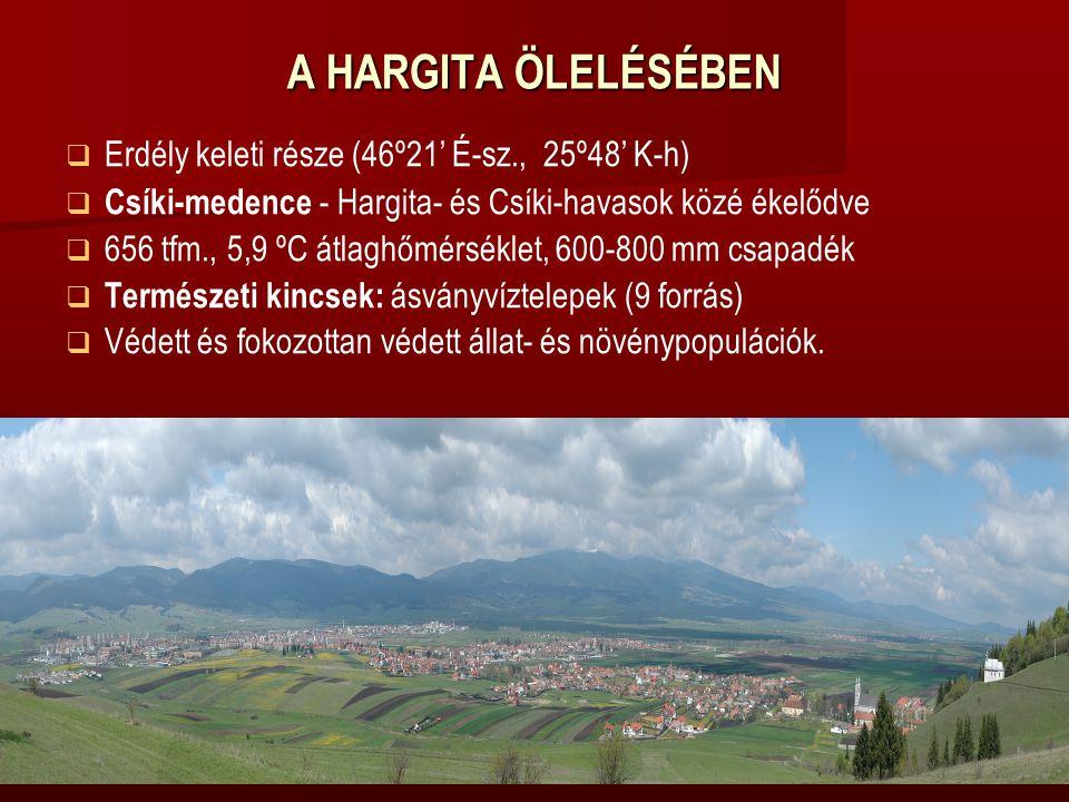 A HARGITA ÖLELÉSÉBEN   Erdély keleti része (46º21' É-sz., 25º48' K-h)    Csíki-medence - Hargita- és Csíki-havasok közé ékelődve   656 tfm., 5,9 ºC átlaghőmérséklet, 600-800 mm csapadék   Természeti kincsek: ásványvíztelepek (9 forrás)   Védett és fokozottan védett állat- és növénypopulációk.