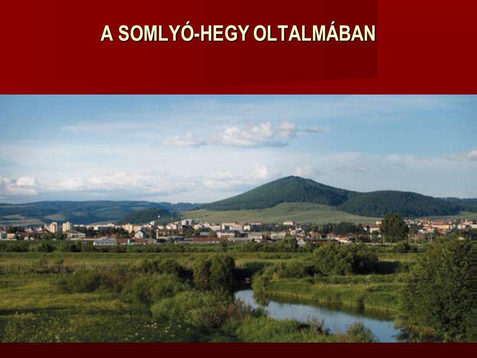 A SOMLYÓ-HEGY OLTALMÁBAN