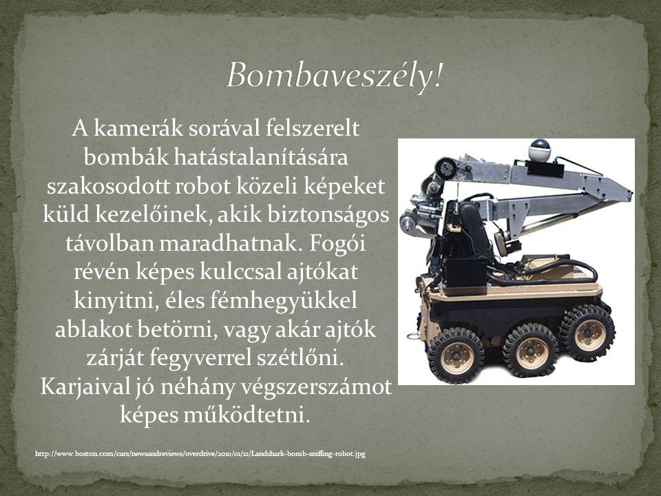 Számos robotot arra alkalmaznak, hogy szerencsétlenségek helyszínén segítsék az emberek mentését, vagy megakadályozzák a katasztrófát bombák hatástala
