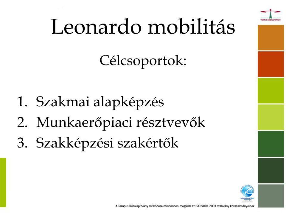 """Leonardo mobilitás Tevékenységek: 1.Transznacionális szakmai gyakorlatok cégeknél vagy képző intézményeknél 2.Szakmai gyakorlatok és csereprogramok szakképzési szakértők és szakoktatók továbbképzésének céljából •A kiutazó személyek száma Magyarországon: kb 2000 kiutazó / év •A """"legnépszerűbb fogadó országok: • DE, FR, FI, ES, UK, SE, RO"""