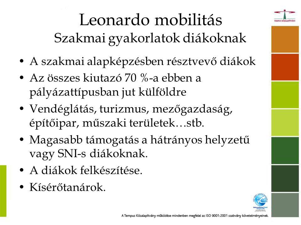 Leonardo mobilitás Szakmai gyakorlatok diákoknak •A szakmai alapképzésben résztvevő diákok •Az összes kiutazó 70 %-a ebben a pályázattípusban jut külföldre •Vendéglátás, turizmus, mezőgazdaság, építőipar, műszaki területek…stb.