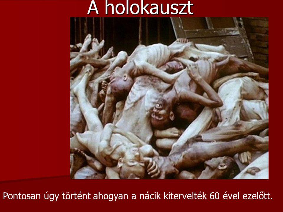 Pontosan úgy történt ahogyan a nácik kitervelték 60 ével ezelőtt. A holokauszt