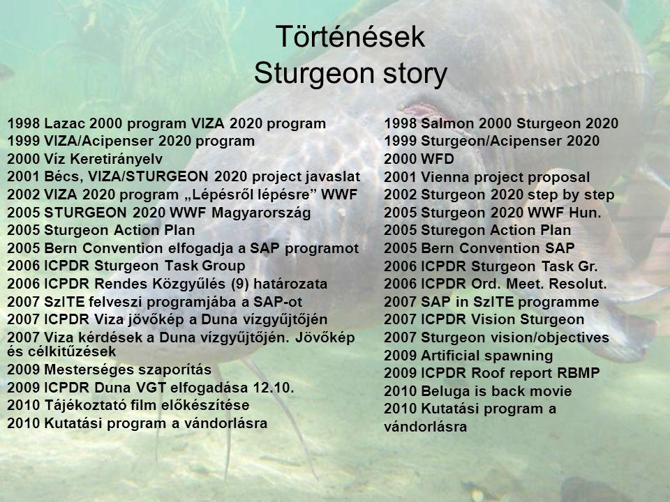 Történések Sturgeon story 1998 Lazac 2000 program VIZA 2020 program 1999 VIZA/Acipenser 2020 program 2000 Víz Keretirányelv 2001 Bécs, VIZA/STURGEON 2