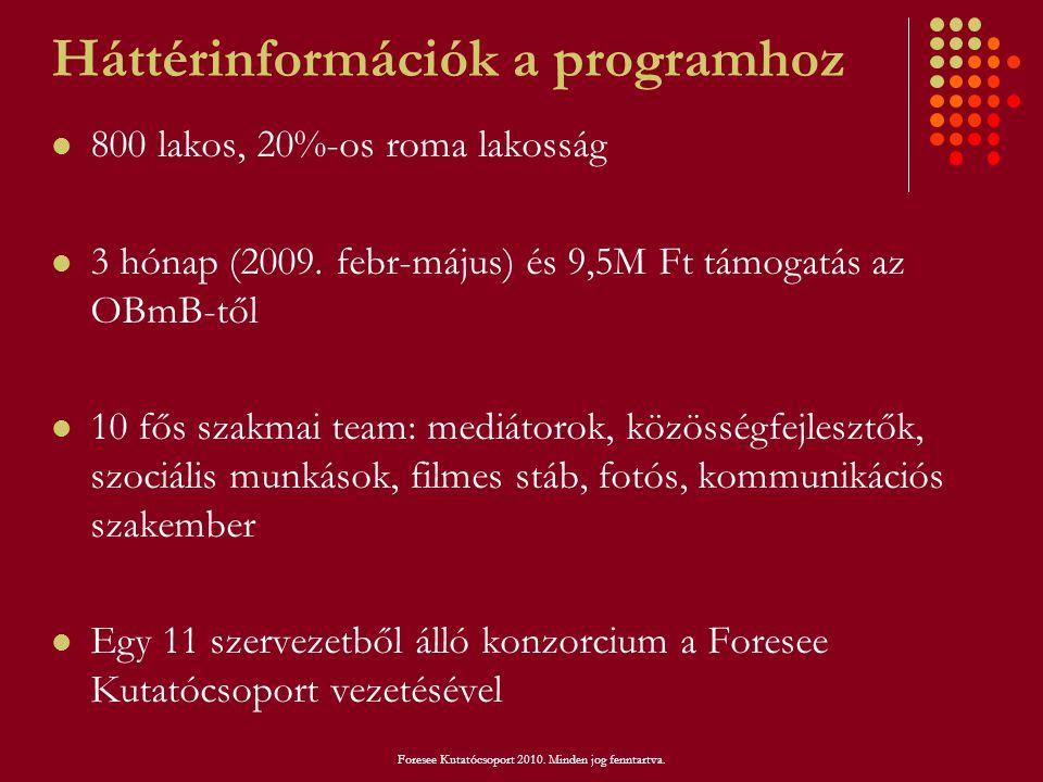 Háttérinformációk a programhoz  800 lakos, 20%-os roma lakosság  3 hónap (2009. febr-május) és 9,5M Ft támogatás az OBmB-től  10 fős szakmai team:
