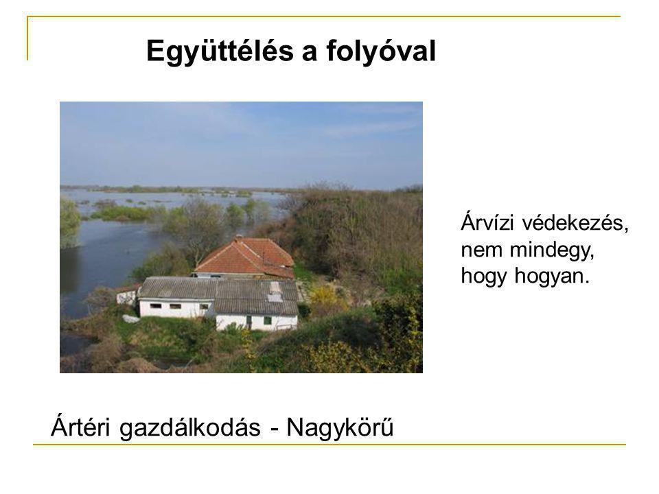 Együttélés a folyóval Ártéri gazdálkodás - Nagykörű Árvízi védekezés, nem mindegy, hogy hogyan.
