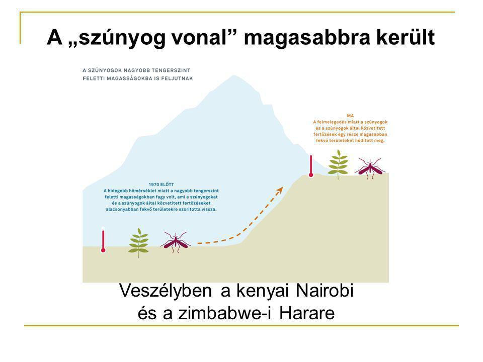 """A """"szúnyog vonal magasabbra került Veszélyben a kenyai Nairobi és a zimbabwe-i Harare"""