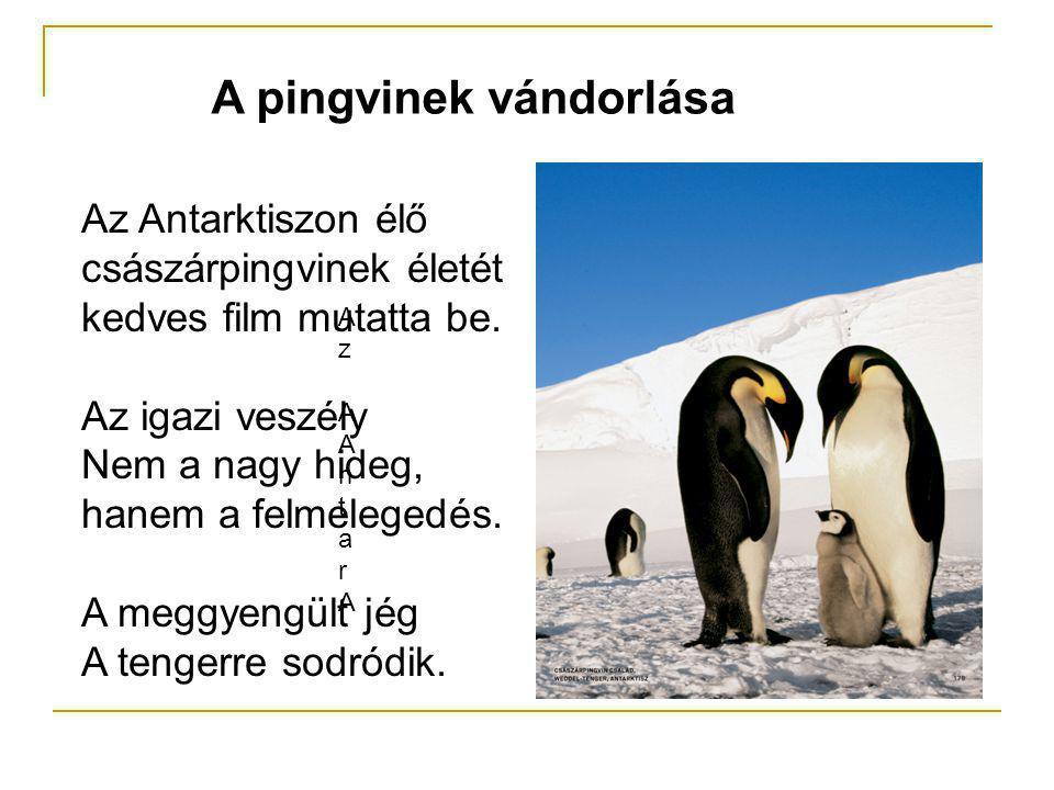 A pingvinek vándorlása Az AAntarAAz AAntarA Az Antarktiszon élő császárpingvinek életét kedves film mutatta be. Az igazi veszély Nem a nagy hideg, han