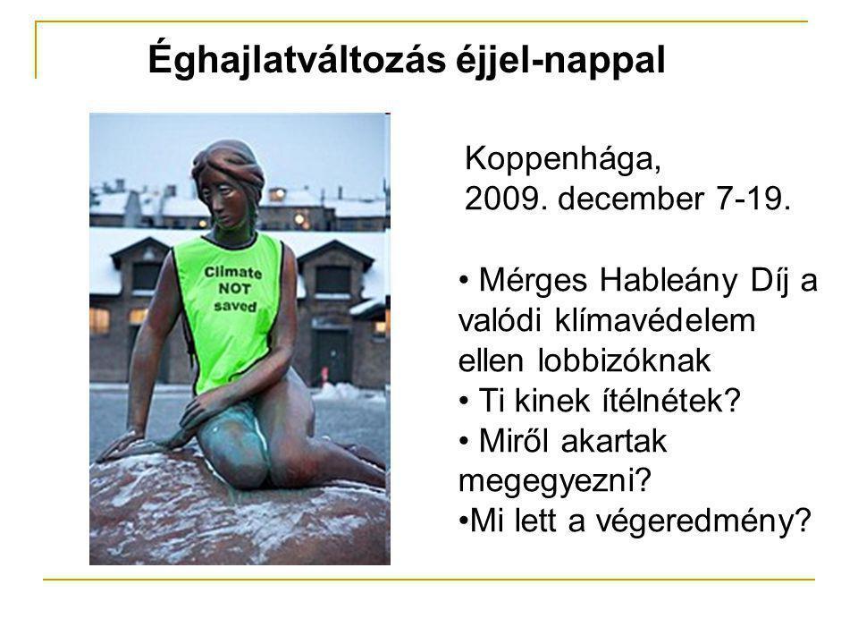 Éghajlatváltozás éjjel-nappal Koppenhága, 2009. december 7-19. • Mérges Hableány Díj a valódi klímavédelem ellen lobbizóknak • Ti kinek ítélnétek? • M