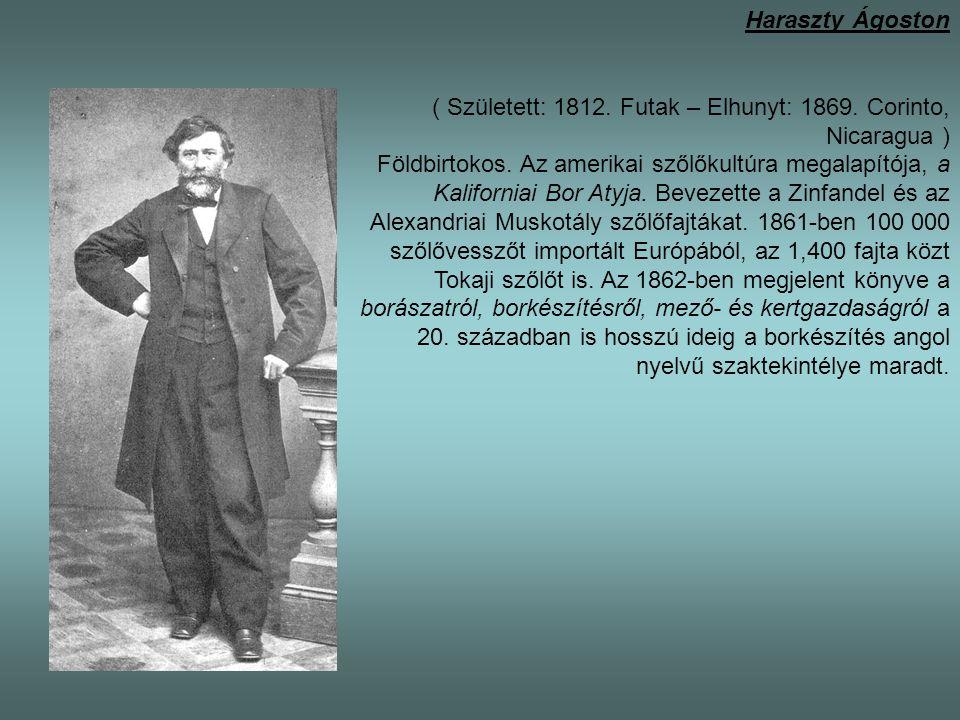 Haraszty Ágoston ( Született: 1812. Futak – Elhunyt: 1869. Corinto, Nicaragua ) Földbirtokos. Az amerikai szőlőkultúra megalapítója, a Kaliforniai Bor