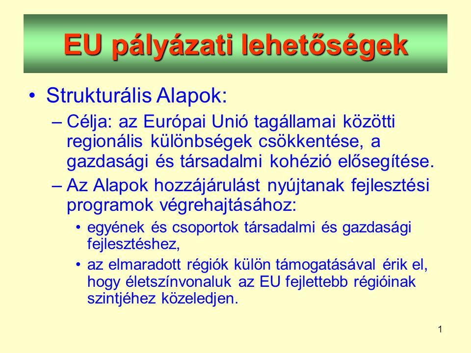 1 EU pályázati lehetőségek •Strukturális Alapok: –Célja: az Európai Unió tagállamai közötti regionális különbségek csökkentése, a gazdasági és társadalmi kohézió elősegítése.