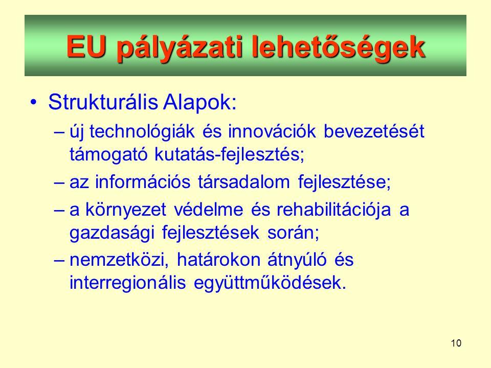 10 EU pályázati lehetőségek •Strukturális Alapok: –új technológiák és innovációk bevezetését támogató kutatás-fejlesztés; –az információs társadalom fejlesztése; –a környezet védelme és rehabilitációja a gazdasági fejlesztések során; –nemzetközi, határokon átnyúló és interregionális együttműködések.