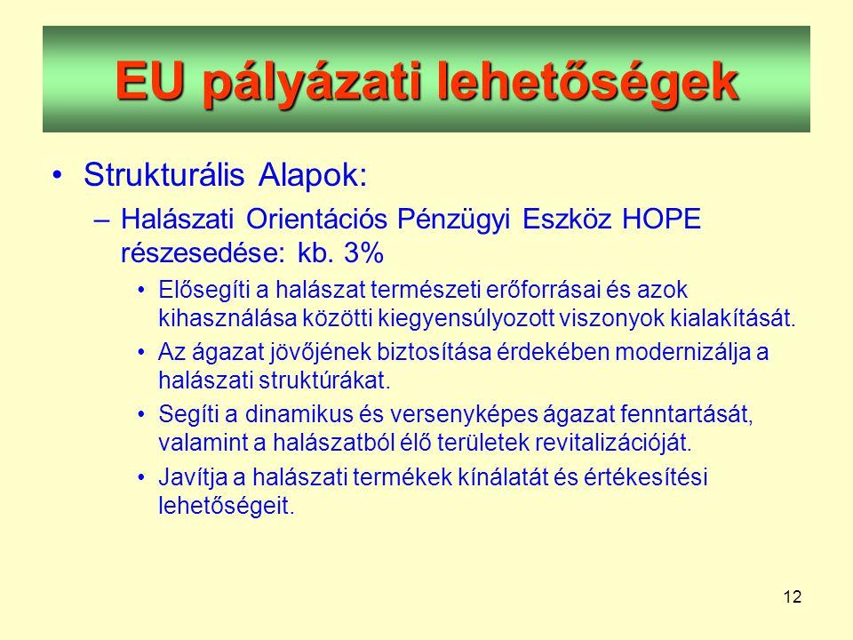 12 EU pályázati lehetőségek •Strukturális Alapok: –Halászati Orientációs Pénzügyi Eszköz HOPE részesedése: kb.