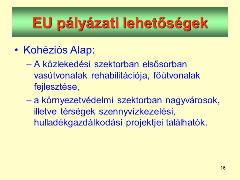 16 EU pályázati lehetőségek •Kohéziós Alap: –A közlekedési szektorban elsősorban vasútvonalak rehabilitációja, főútvonalak fejlesztése, –a környezetvédelmi szektorban nagyvárosok, illetve térségek szennyvízkezelési, hulladékgazdálkodási projektjei találhatók.