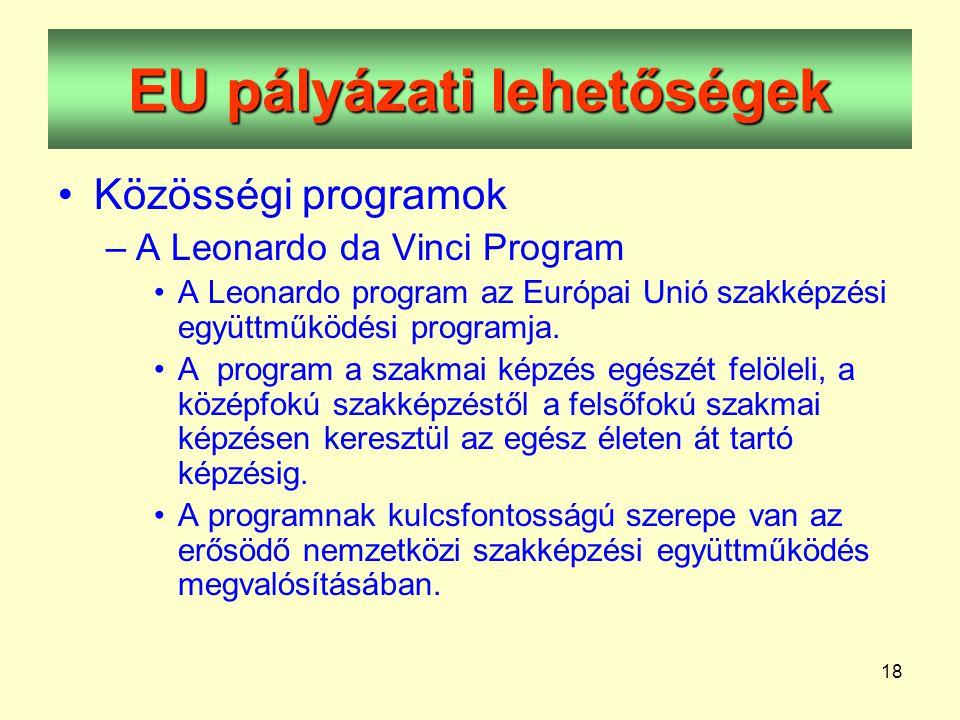 18 EU pályázati lehetőségek •Közösségi programok –A Leonardo da Vinci Program •A Leonardo program az Európai Unió szakképzési együttműködési programja.