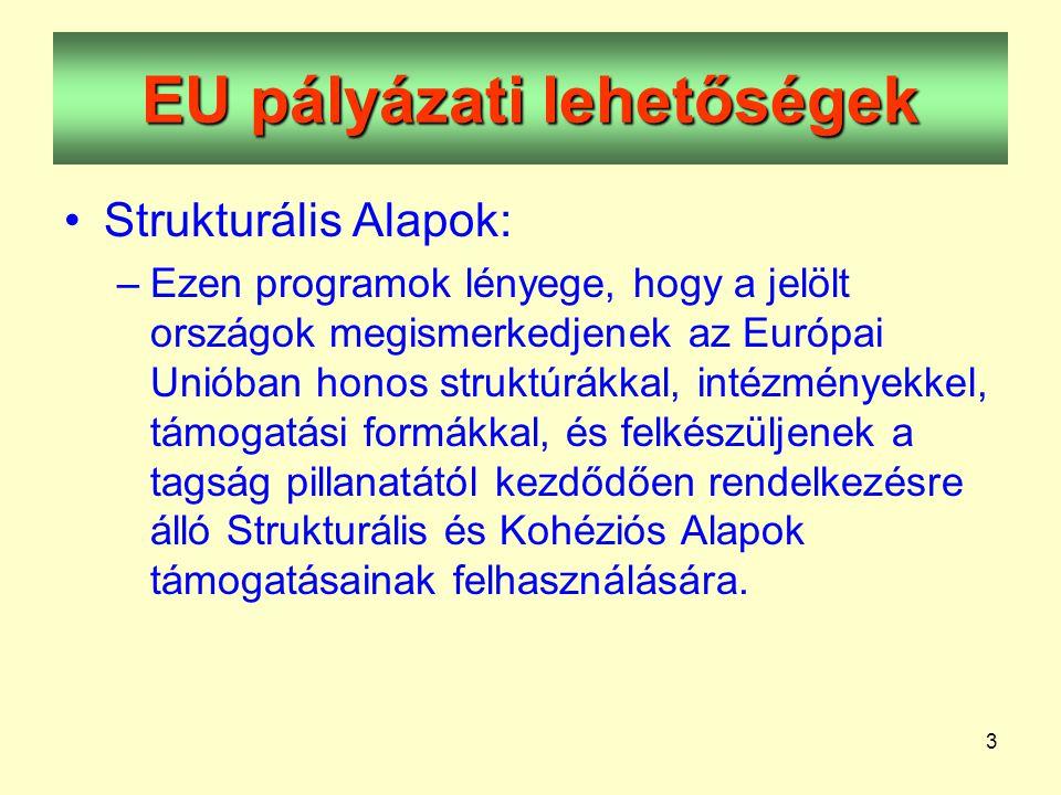 3 EU pályázati lehetőségek •Strukturális Alapok: –Ezen programok lényege, hogy a jelölt országok megismerkedjenek az Európai Unióban honos struktúrákkal, intézményekkel, támogatási formákkal, és felkészüljenek a tagság pillanatától kezdődően rendelkezésre álló Strukturális és Kohéziós Alapok támogatásainak felhasználására.