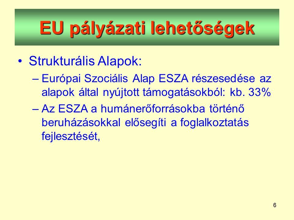6 EU pályázati lehetőségek •Strukturális Alapok: –Európai Szociális Alap ESZA részesedése az alapok által nyújtott támogatásokból: kb.