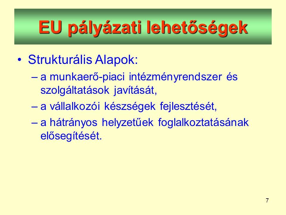 7 EU pályázati lehetőségek •Strukturális Alapok: –a munkaerő-piaci intézményrendszer és szolgáltatások javítását, –a vállalkozói készségek fejlesztését, –a hátrányos helyzetűek foglalkoztatásának elősegítését.