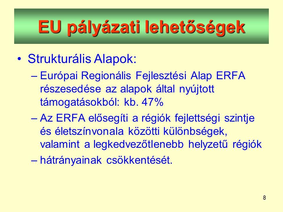 8 EU pályázati lehetőségek •Strukturális Alapok: –Európai Regionális Fejlesztési Alap ERFA részesedése az alapok által nyújtott támogatásokból: kb.