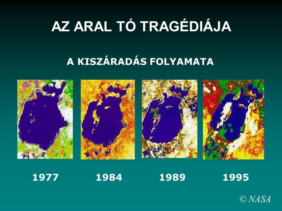 1977 1984 1989 1995 A KISZÁRADÁS FOLYAMATA © NASA AZ ARAL TÓ TRAGÉDIÁJA