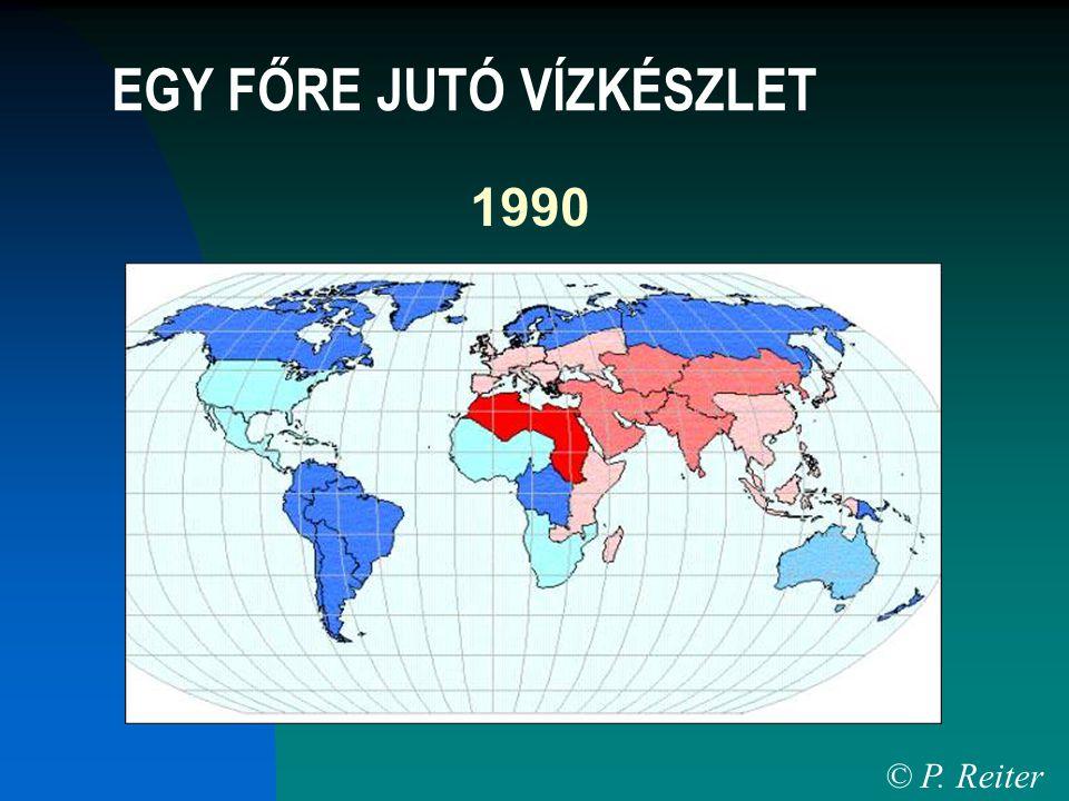 1990 © P. Reiter EGY FŐRE JUTÓ VÍZKÉSZLET