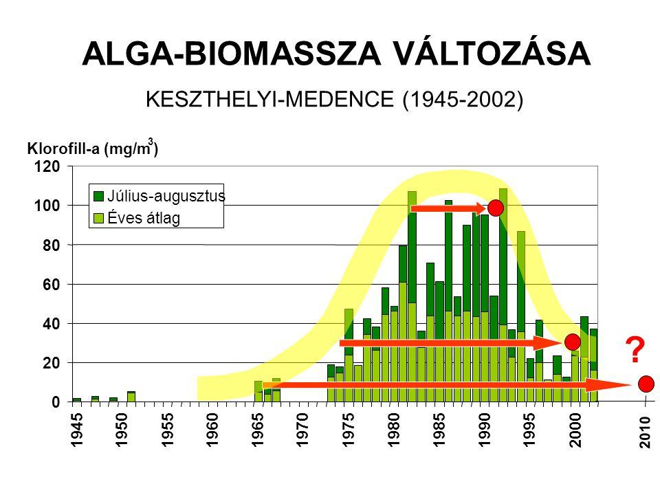 0 20 40 60 80 100 120 194519501955196019651970197519801985199019952000 Július-augusztus Éves átlag Klorofill-a (mg/m 3 ) ALGA-BIOMASSZA VÁLTOZÁSA KESZTHELYI-MEDENCE (1945-2002) 2010 ?