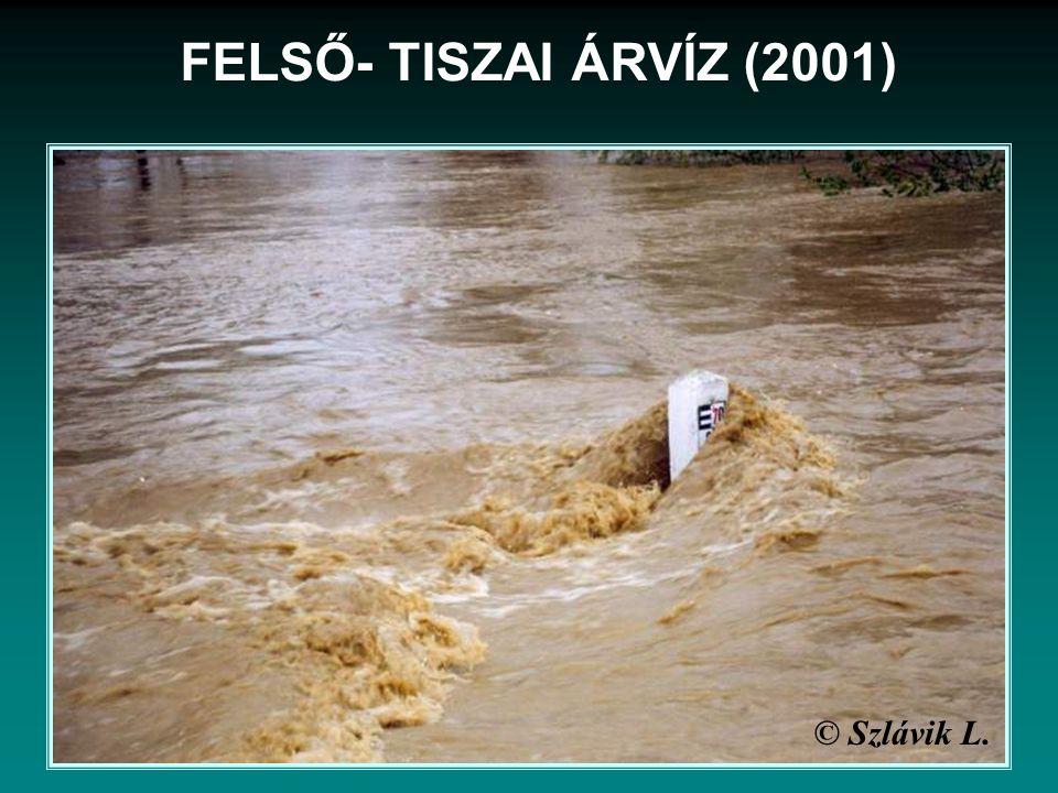 © Szlávik L. FELSŐ- TISZAI ÁRVÍZ (2001)
