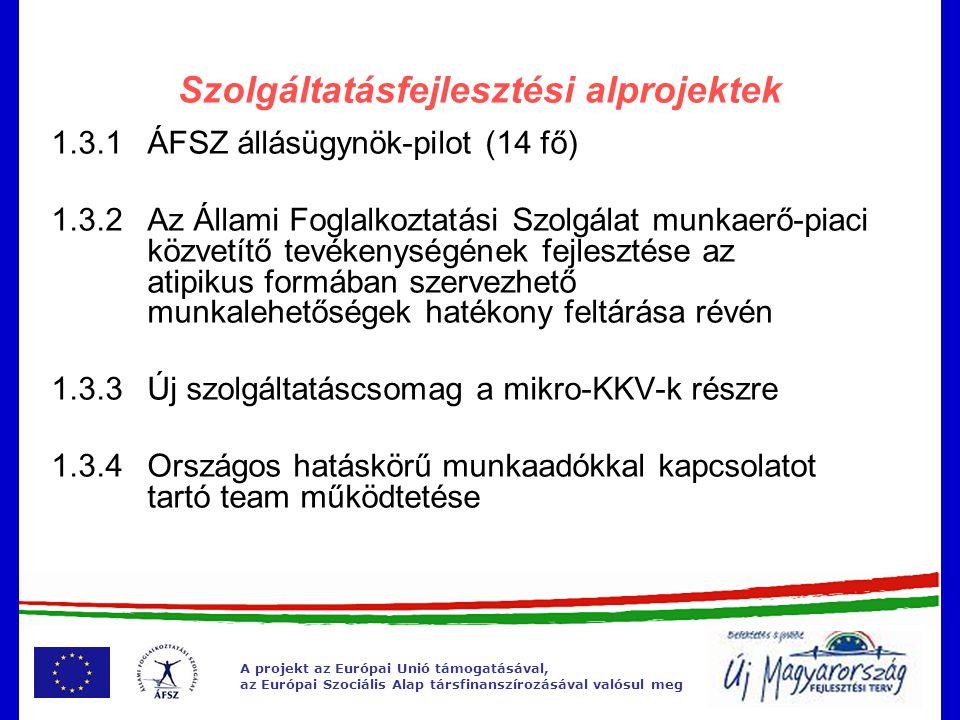 A projekt az Európai Unió támogatásával, az Európai Szociális Alap társfinanszírozásával valósul meg A megváltozott munkaképességű személyekre vonatkozó rendszer átalakulását szükségessé tevő tényezők A 2008.