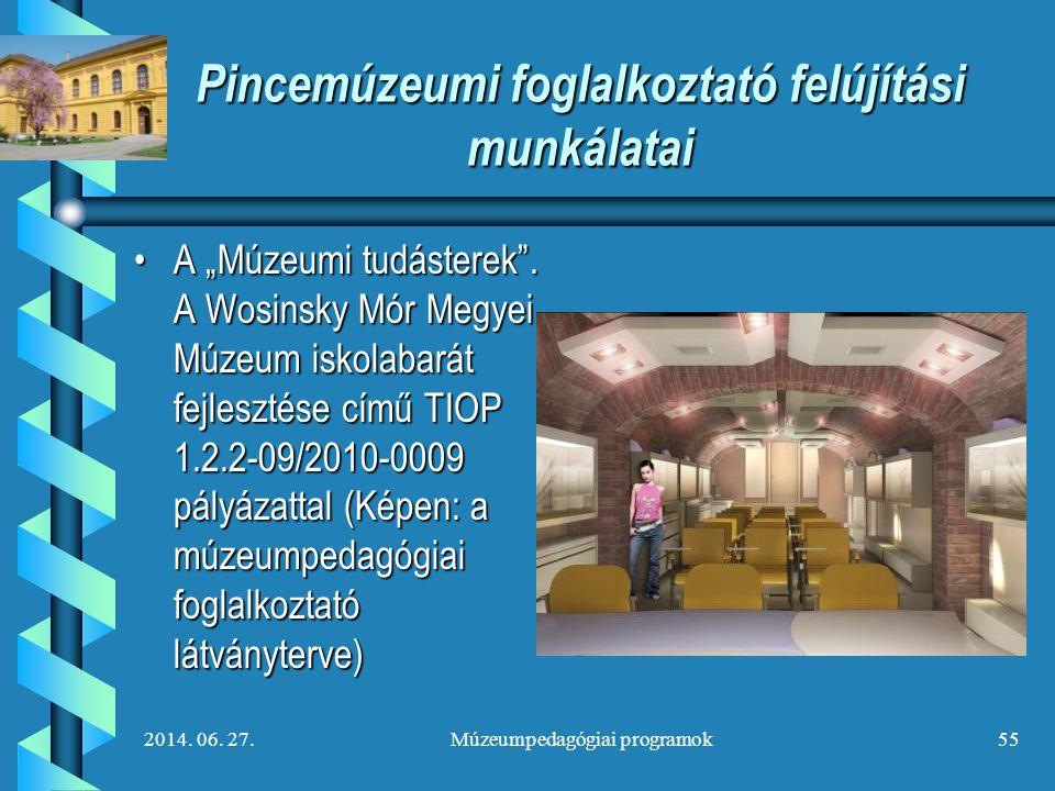 """2014. 06. 27.Múzeumpedagógiai programok55 Pincemúzeumi foglalkoztató felújítási munkálatai •A """"Múzeumi tudásterek"""". A Wosinsky Mór Megyei Múzeum iskol"""