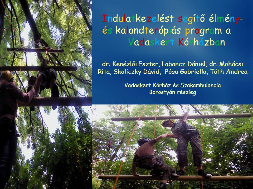 Indulatkezelést segítő élmény- és kalandterápiás program a Vadaskert Kórházban dr. Kenézlői Eszter, Labancz Dániel, dr. Mohácsi Rita, Skaliczky Dávid,
