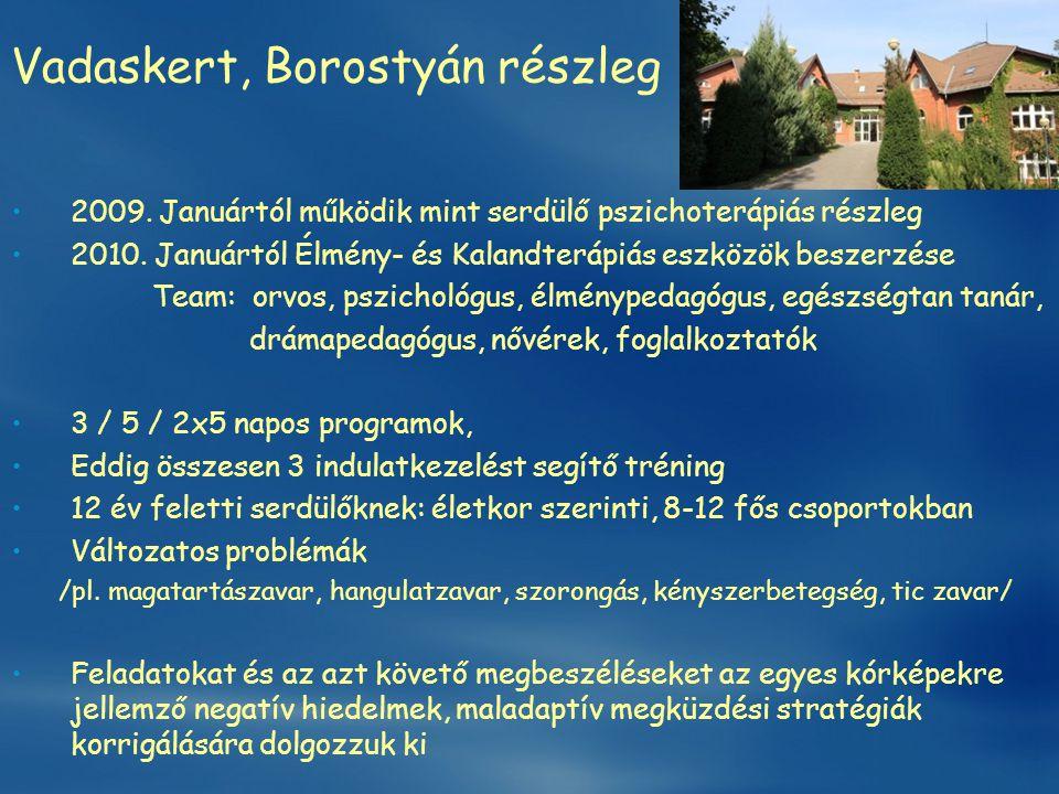 Vadaskert, Borostyán részleg •2009. Januártól működik mint serdülő pszichoterápiás részleg •2010. Januártól Élmény- és Kalandterápiás eszközök beszerz