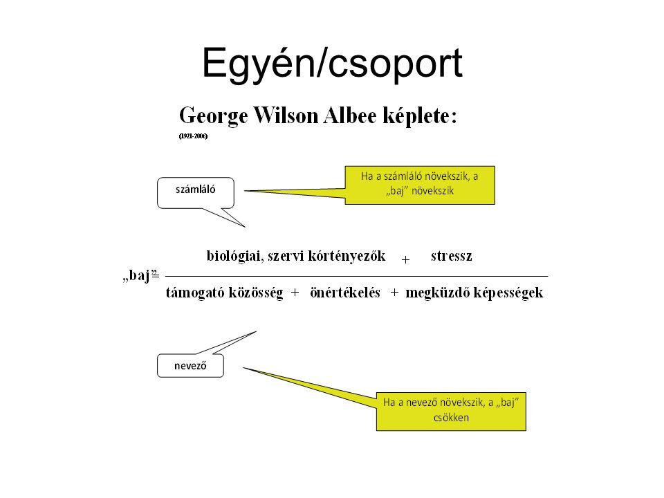 Egyén/csoport
