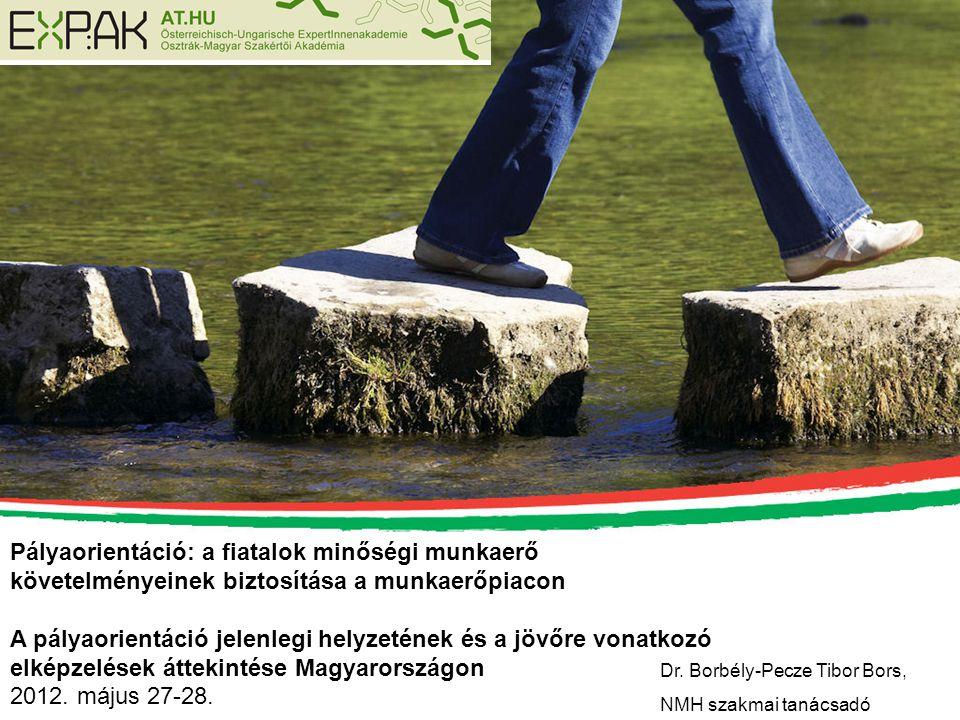 Pályaorientáció: a fiatalok minőségi munkaerő követelményeinek biztosítása a munkaerőpiacon A pályaorientáció jelenlegi helyzetének és a jövőre vonatk
