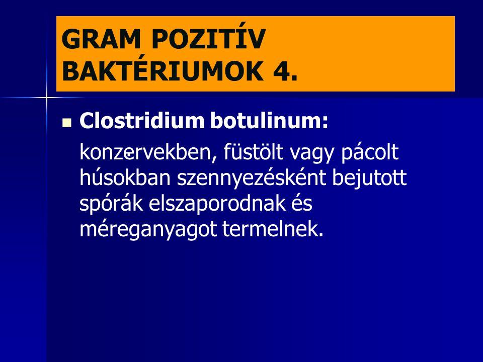 GRAM POZITÍV BAKTÉRIUMOK 4.   Clostridium botulinum: konzervekben, füstölt vagy pácolt húsokban szennyezésként bejutott spórák elszaporodnak és mére