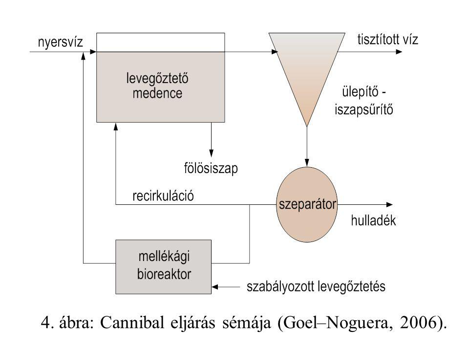 4. ábra: Cannibal eljárás sémája (Goel–Noguera, 2006).
