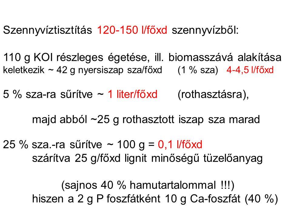 Szennyvíztisztítás 120-150 l/főxd szennyvízből: 110 g KOI részleges égetése, ill. biomasszává alakítása keletkezik ~ 42 g nyersiszap sza/főxd (1 % sza