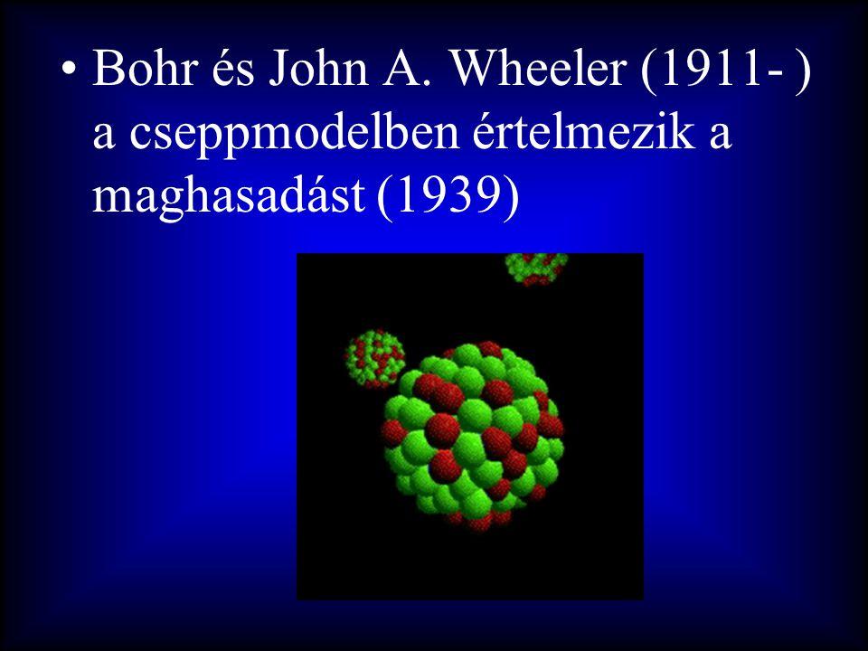 •Bohr és John A. Wheeler (1911- ) a cseppmodelben értelmezik a maghasadást (1939)