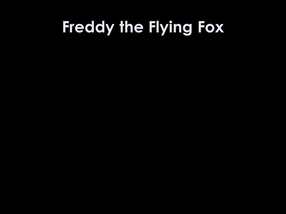 Freddy the Flying Fox