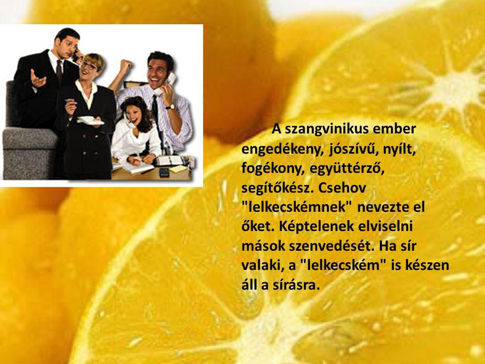 A szangvinikus ember engedékeny, jószívű, nyílt, fogékony, együttérző, segítőkész. Csehov