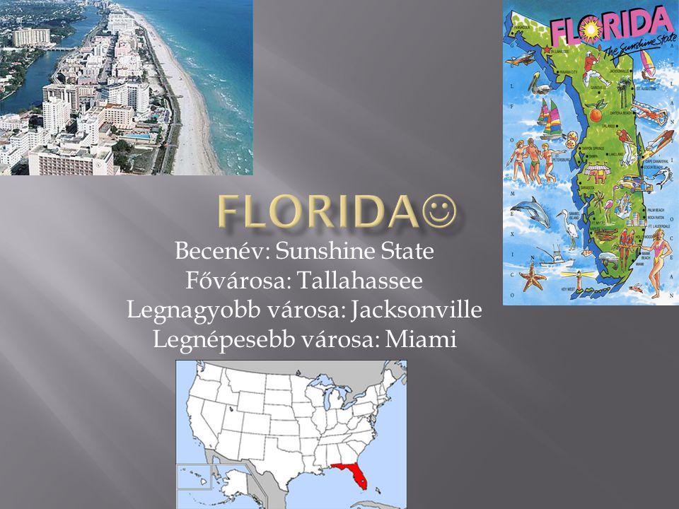 Becenév: Sunshine State Fővárosa: Tallahassee Legnagyobb városa: Jacksonville Legnépesebb városa: Miami