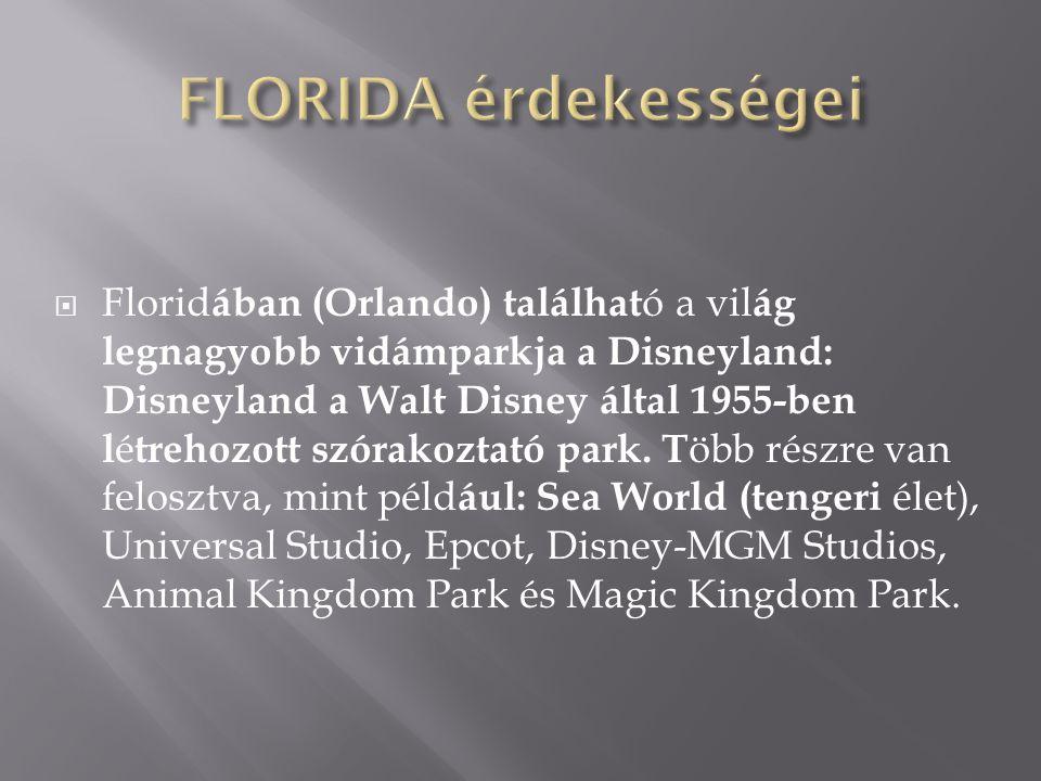  Florid ában (Orlando) találhat ó a vil ág legnagyobb vidámparkja a Disneyland: Disneyland a Walt Disney által 1955-ben l é trehozott szórakoztató pa