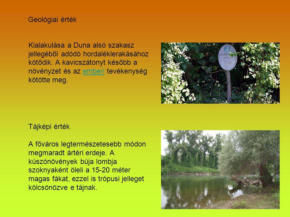 Zoológiai érték Állatvilágának különlegessége botanikai, cönológiai sajátosságaiban rejlik.